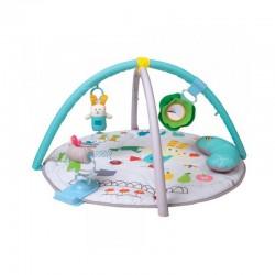 Taf toys - Γυμναστήριο Garden Tummy Time 12195